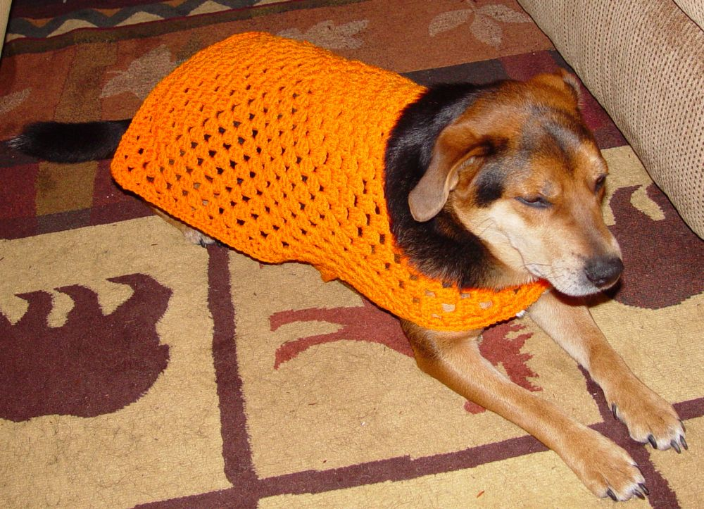 Free Crochet Granny Square Dog Sweater : Granny Square Dog Sweater - Pet Items - Crochetville